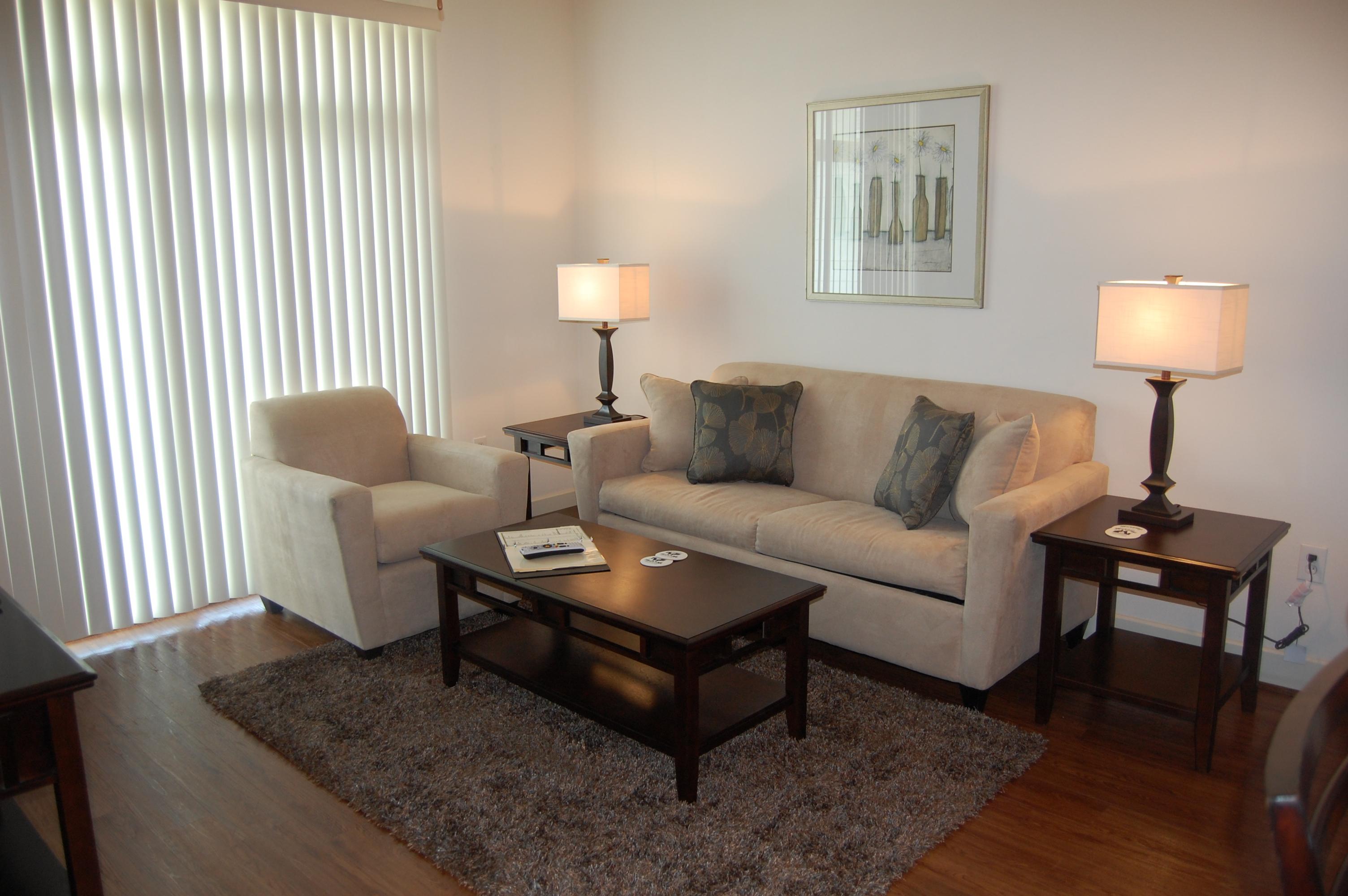 Domain-at-CC-Living-Room