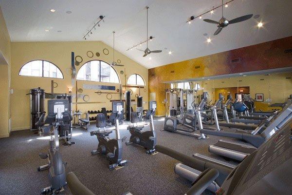 San-Paloma-Gym