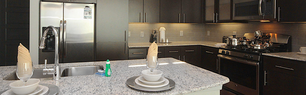 Solutions-Page-Banner_Kitchen3